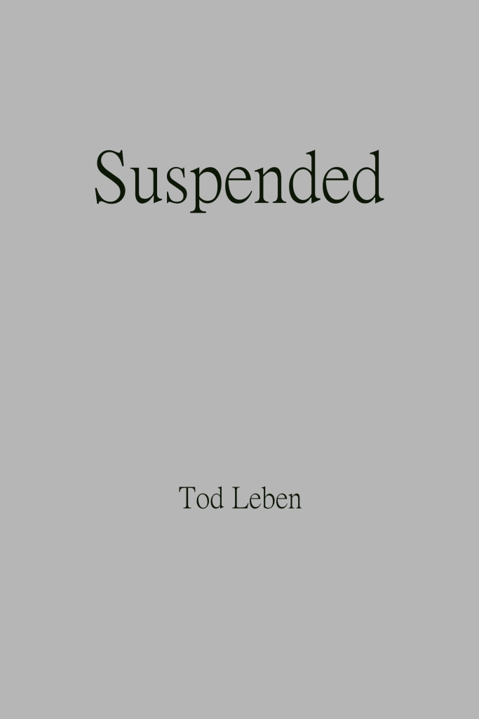 Suspended cover image x2 by Tod Leben