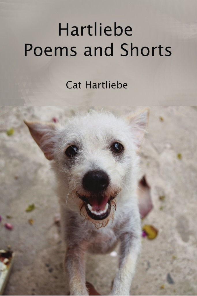 Hartliebe Poems and Shorts by Cat Hartliebe front cover